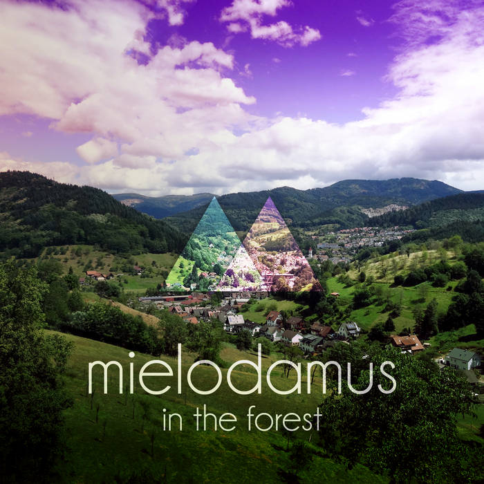 In the Forest cover art