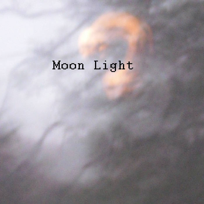Moon light cover art