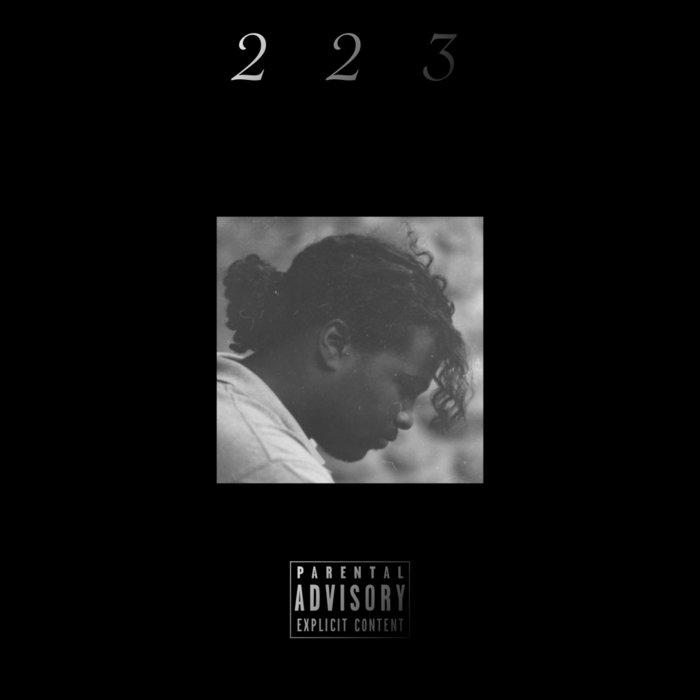 223 cover art