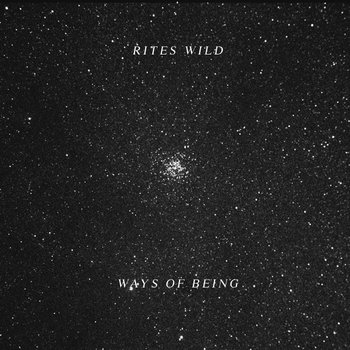 Ways of Being LP (2012, Not Not Fun Records) cover art