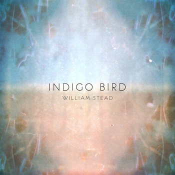 Indigo Bird cover art