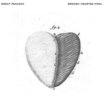 Broken Hearted Fool cover art