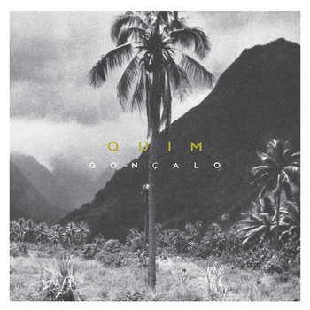 QUIM cover art