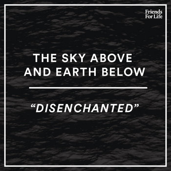 Disenchanted cover art