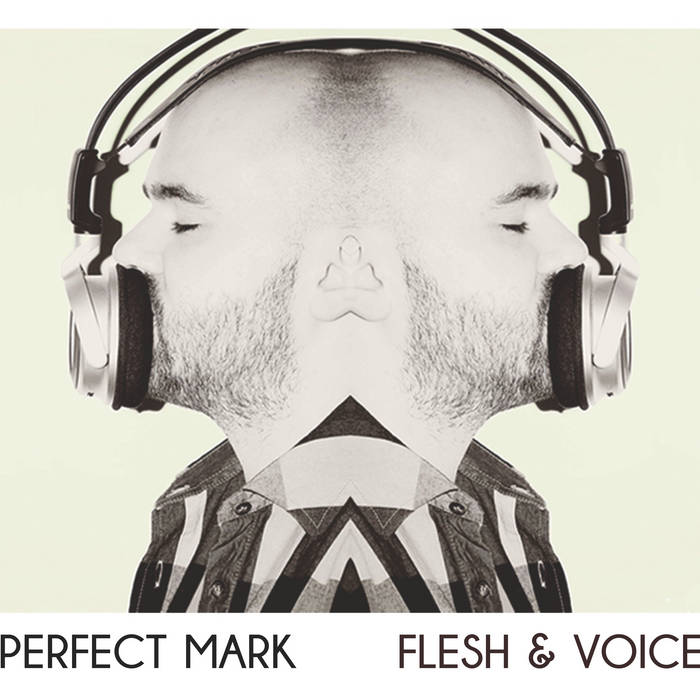 Flesh & Voice cover art