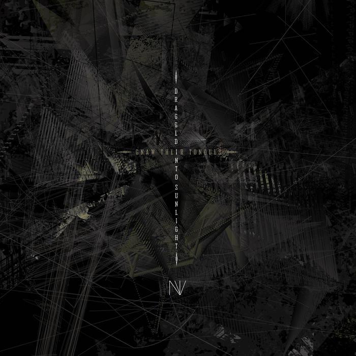 N.V. cover art