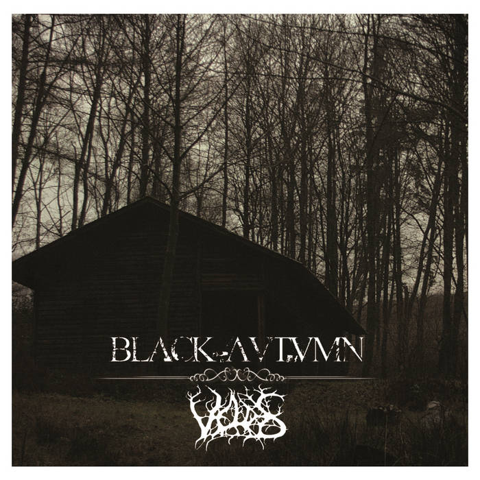 Black Autumn / Veldes - Split cover art