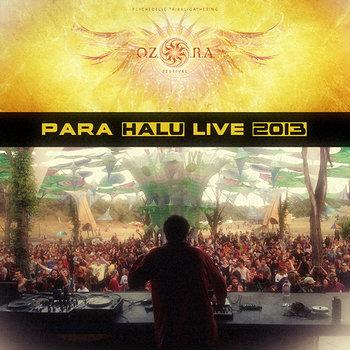 Live at Ozora Festival 2013 cover art