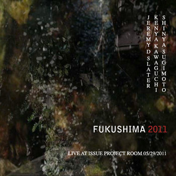 Fukushima 2011 cover art