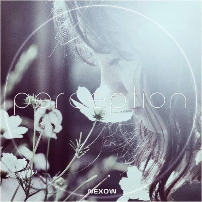 Perception cover art