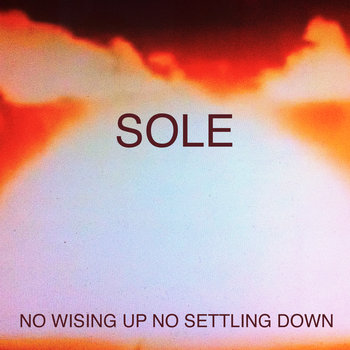 No Wising  Up No Settling Down cover art