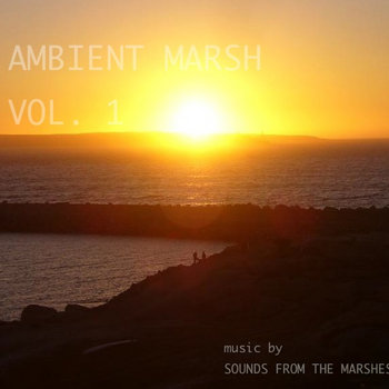 Ambient Marsh Vol.1 cover art
