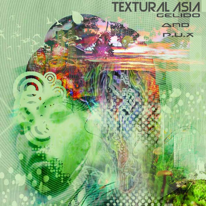Textural Asia - Gelido & P.U.X cover art