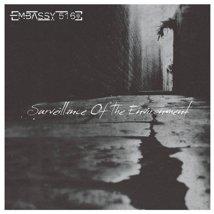 Surveillance of the Environment cover art