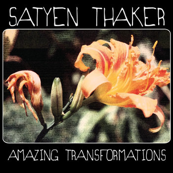 Amazing Transformations cover art