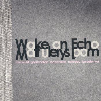 Wake An Echo cover art