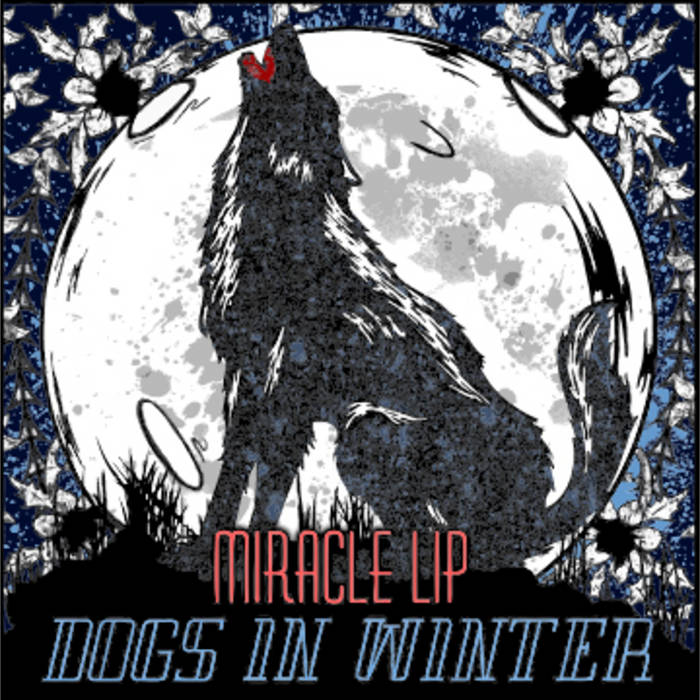 Miracle Lip cover art