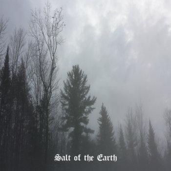 Salt of the Earth cover art