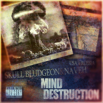 Mind Destruction (2011) cover art