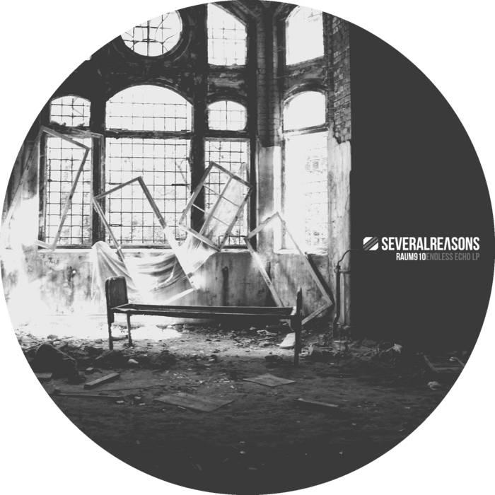 Endless Echo LP cover art