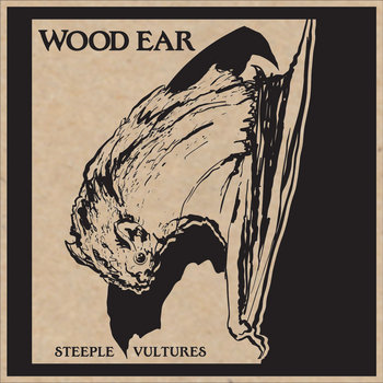Steeple Vultures cover art