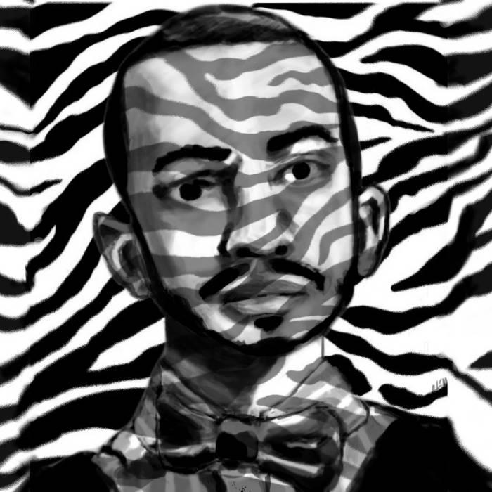 Zebra cover art