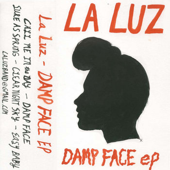 Damp Face cover art