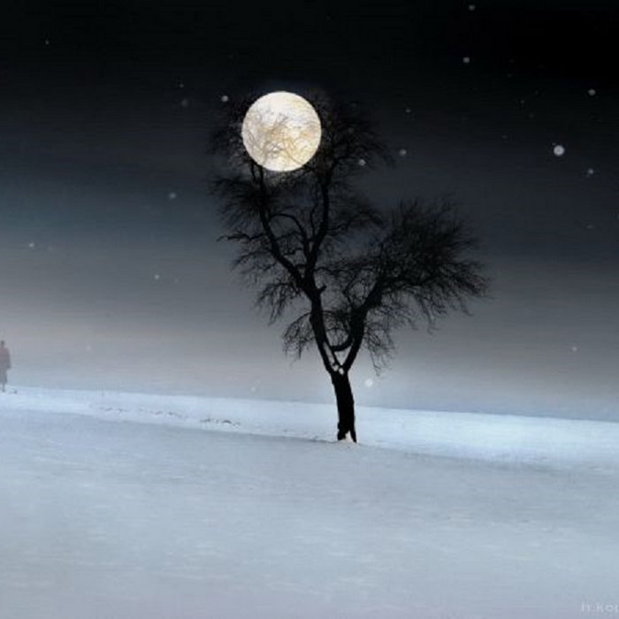 Snow And Moon cover art