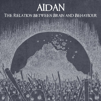 The Relation between Brain and Behaviour cover art