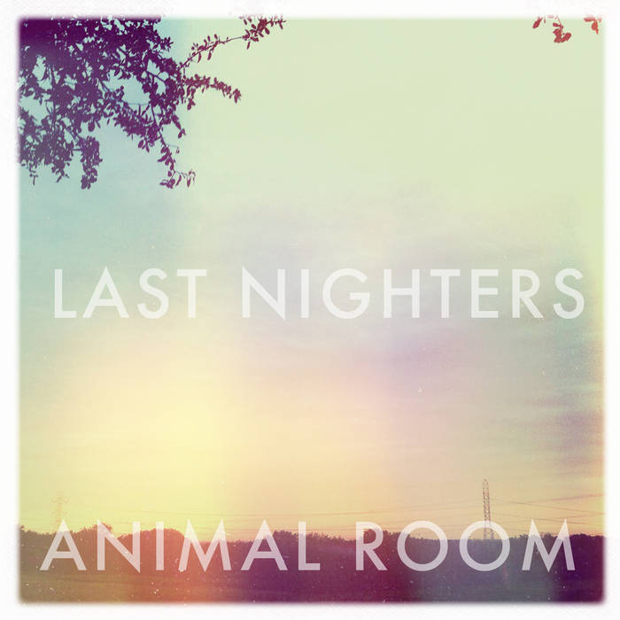 Animal Room cover art