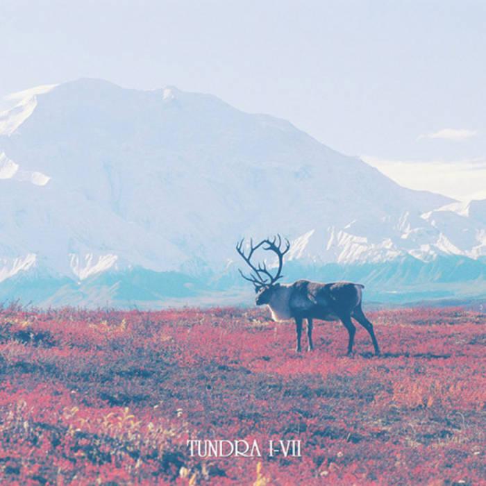 Tundra I-VII cover art