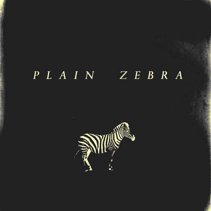 Plain Zebra cover art