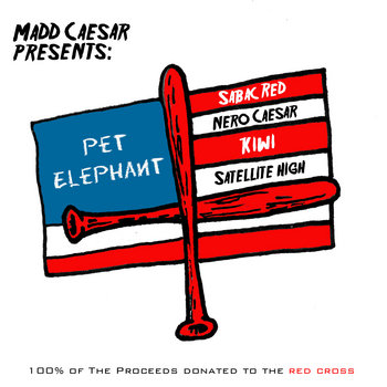 Pet Elephant cover art