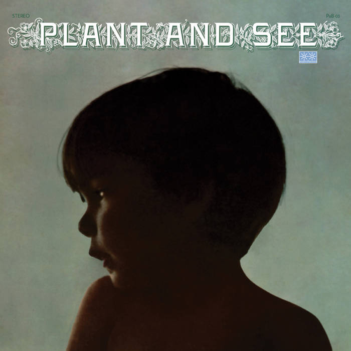 Plant and See cover art