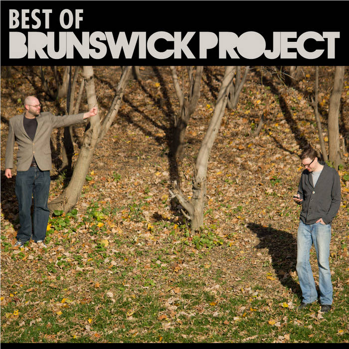 The Best of The Brunswick Project cover art