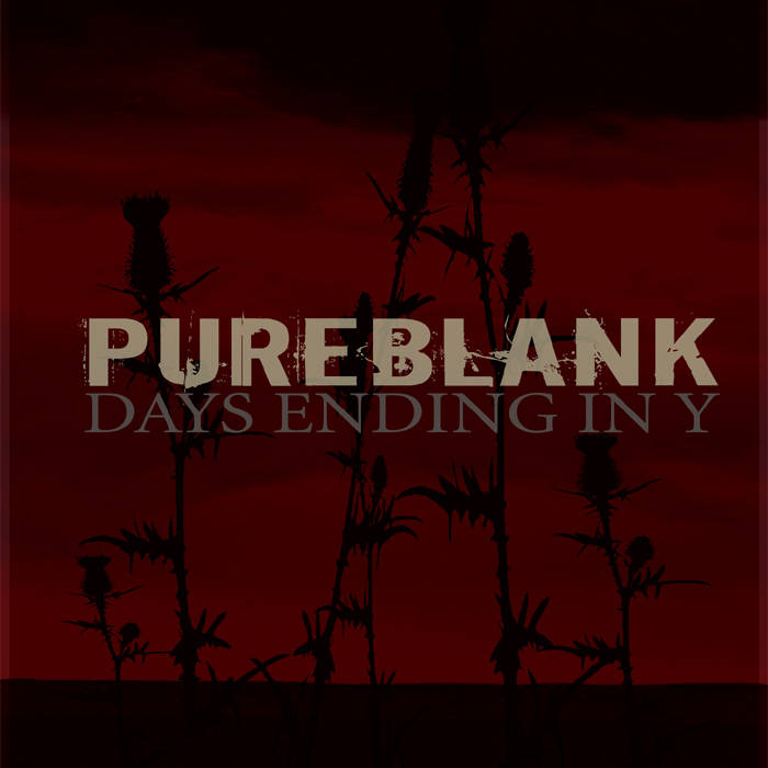 PUREBLANK - Days Ending In Y cover art