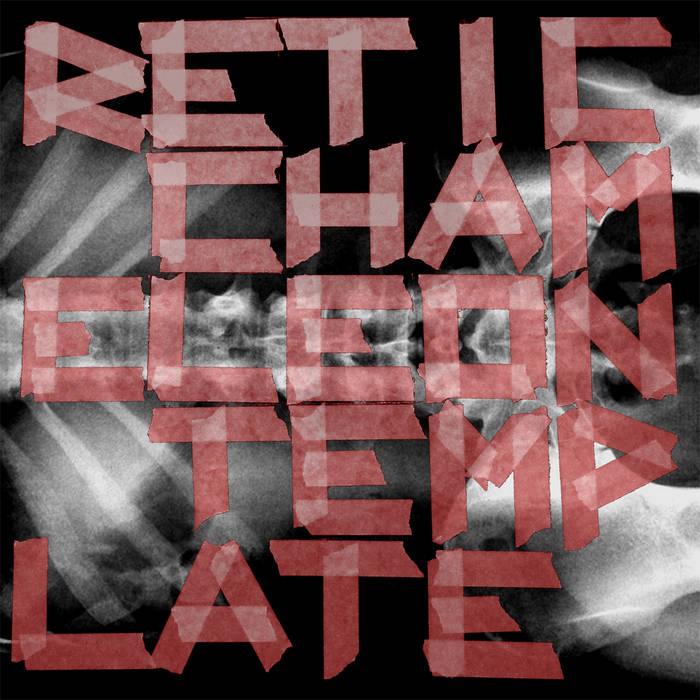 Chameleon Template cover art