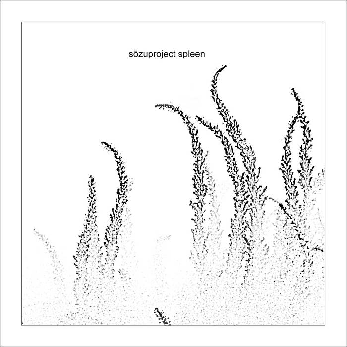 Spleen cover art