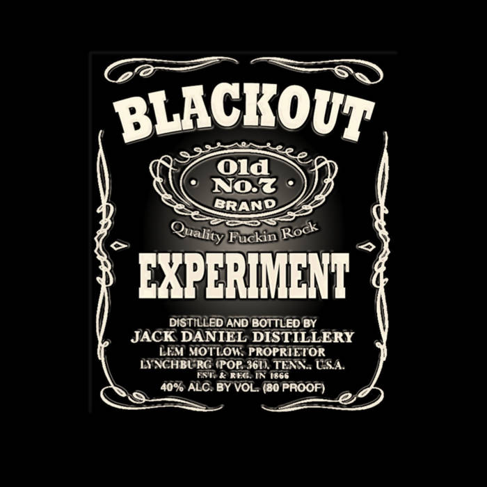 The Blackout Experiment cover art