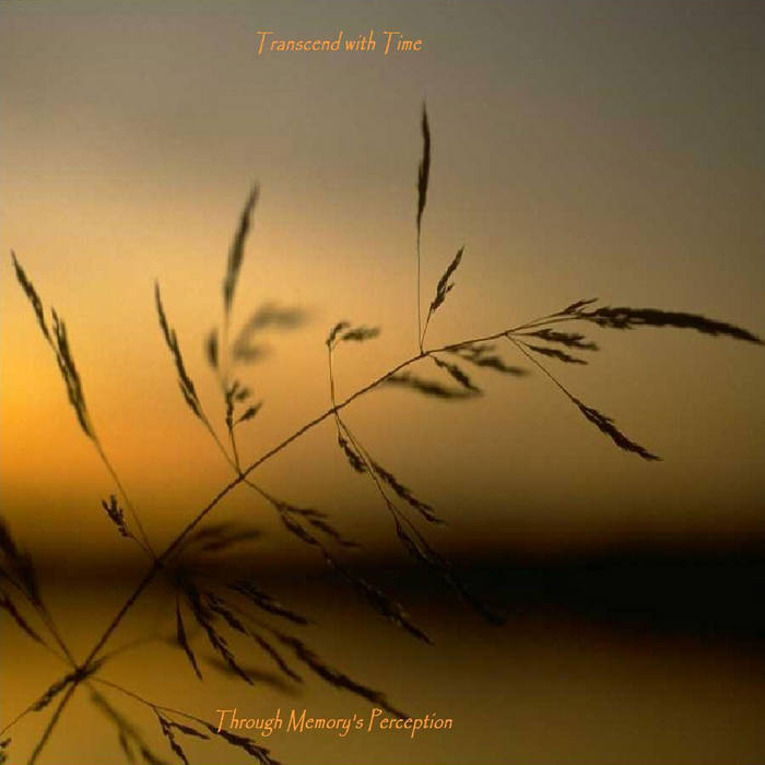 Through Memory's Perception cover art