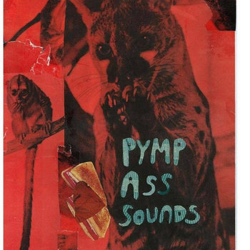 PYMP ASS SOUNDS (Split w/ Hurricanes of Love) cover art
