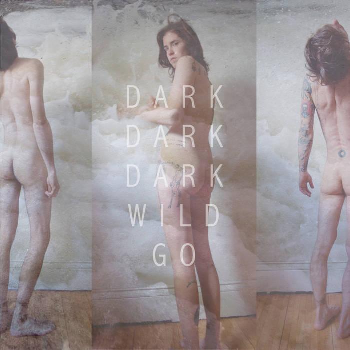 Wild Go cover art
