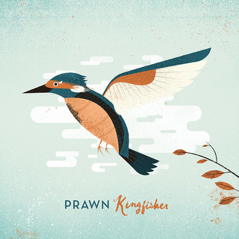 Kingfisher cover art