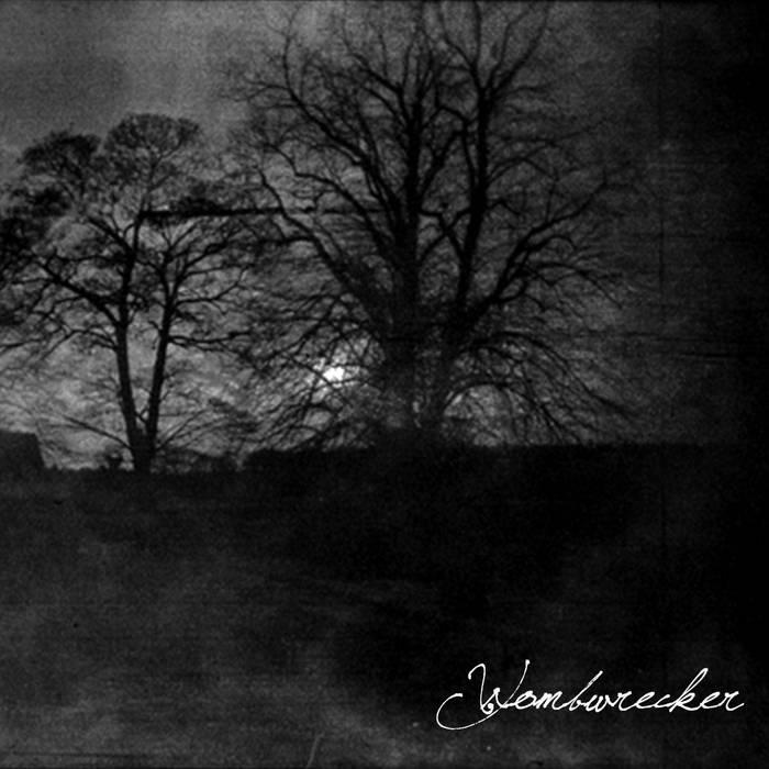 Wombwrecker cover art