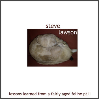 Lessons Learned From An Aged Feline, Pt II cover art