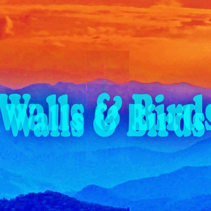 Walls & Birds cover art
