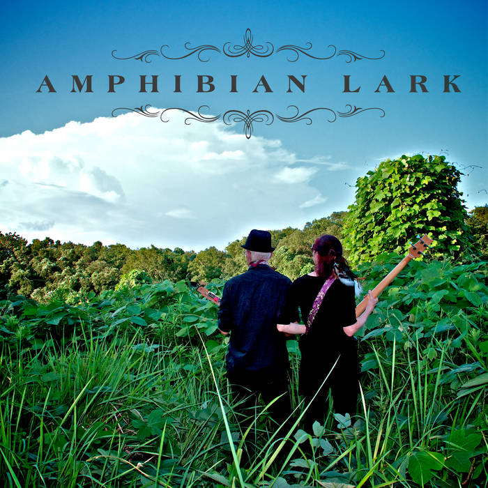 Amphibian Lark cover art
