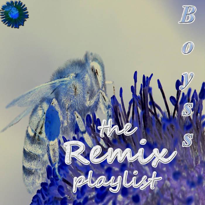 With The Wild (Boyss Instrumental Remix)   Boyss