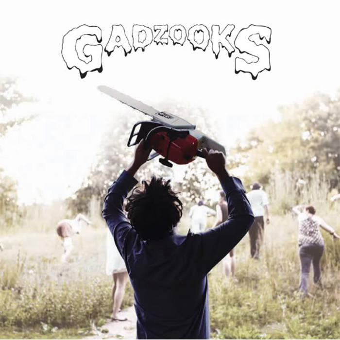 Gadzooks cover art