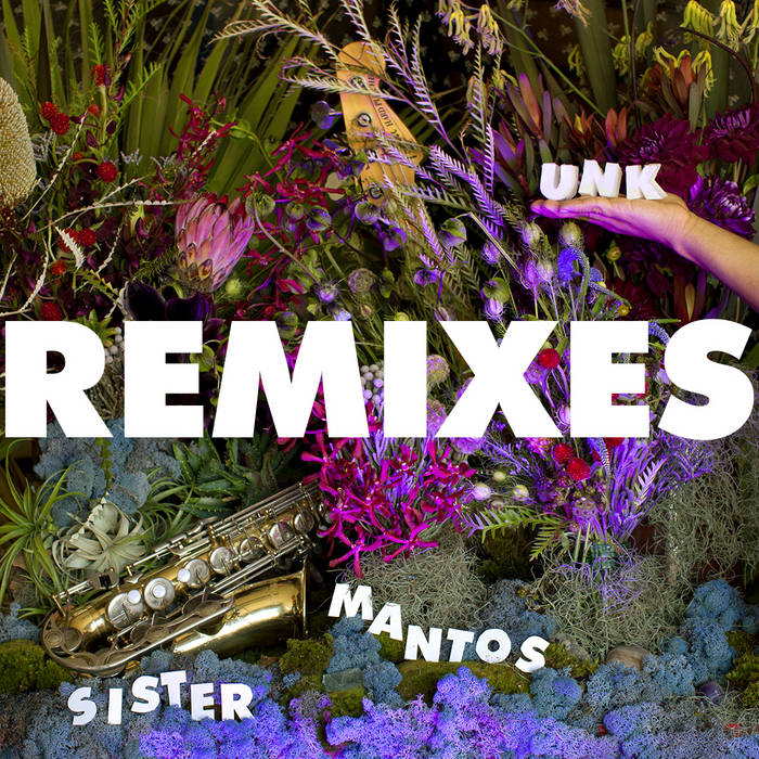 UNK - REMIXES cover art